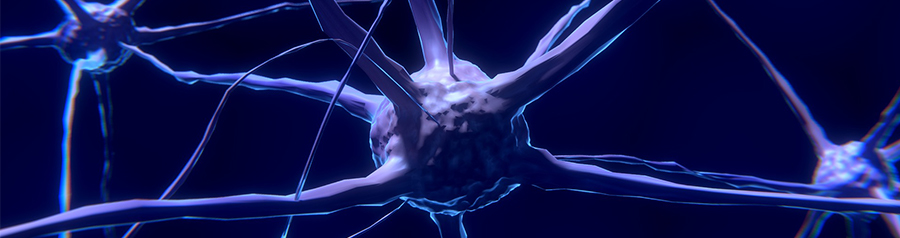 Microscopic image of a nerve cell